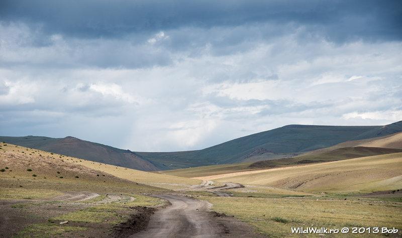 Hotgor track; approaching Bayram pass, 2560 m
