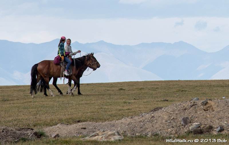 Hotgor track; Bayram pass, 2560 m