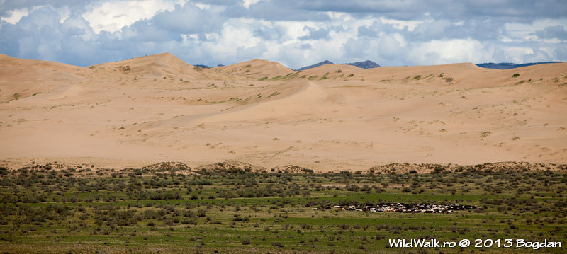 Sand dunes in the North of Mongolia