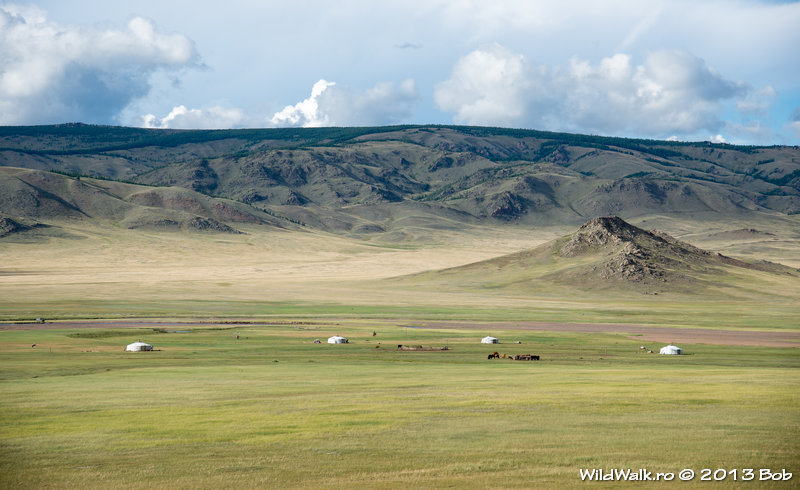In the North of Mongolia